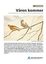 konst_Karolinska Solna Strålkniven_Våren kommer-1