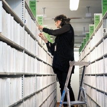 Syntolkning: En arkivarie står på en stege och bläddrar i arkivfilerna på Regionarkivet